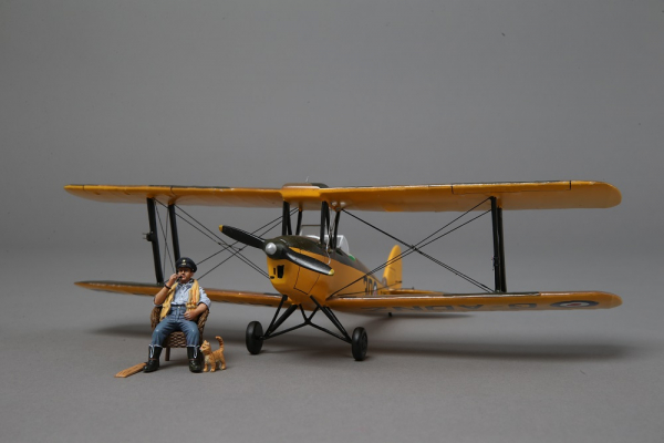 WOW043 RAF Tiger Moth